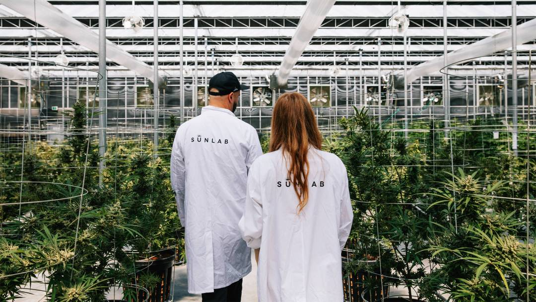Dank Rebel: Inside the Stunning World of a Canadian Cannabis Entrepreneur