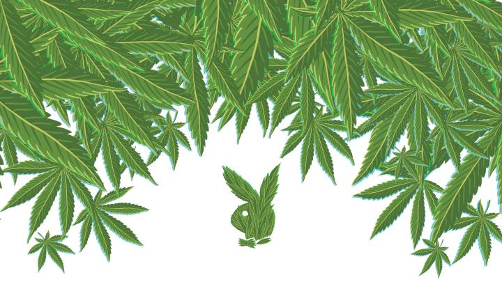 On Playboy's History as a Weed Warrior