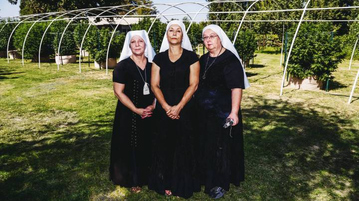 Sisters of the Valley: The Nuns Whose Religion Is Cannabis