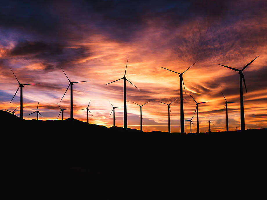 Governments Are Racing to Save the Planet with Renewable Energy, But for Whom?